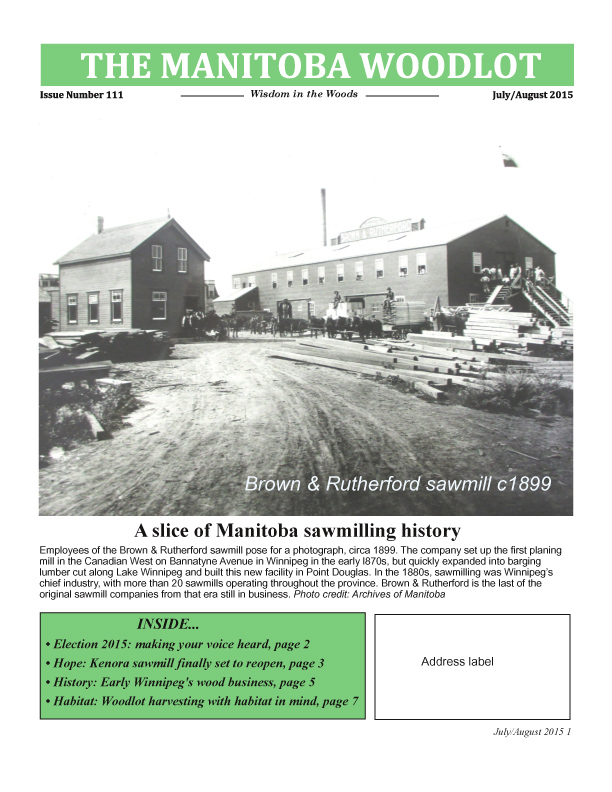 WAM newsletter 111 FP copy