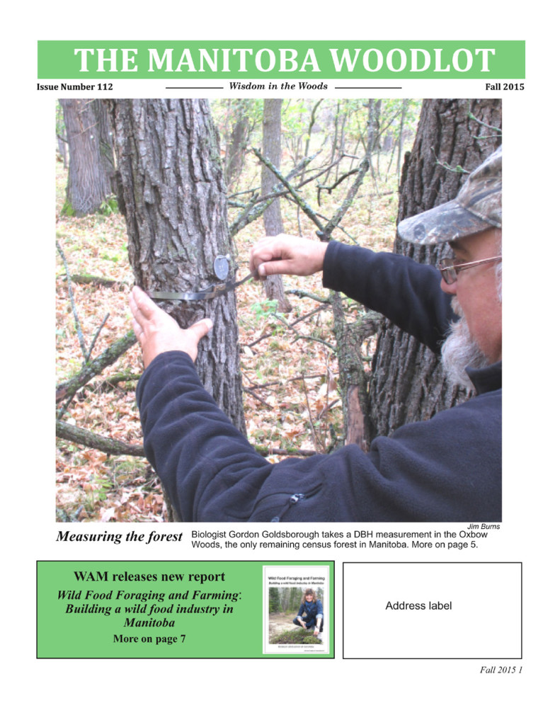 WAM newsletter 112 FP copy