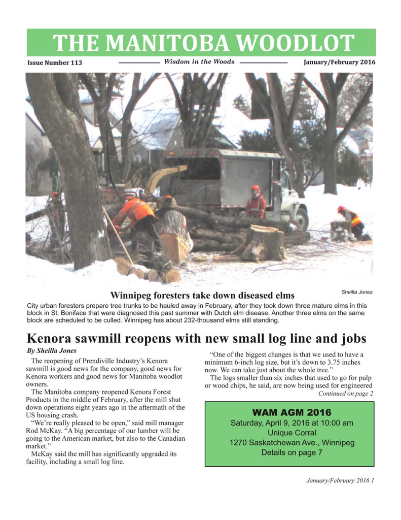 WAM Newsletter 113 FP copy