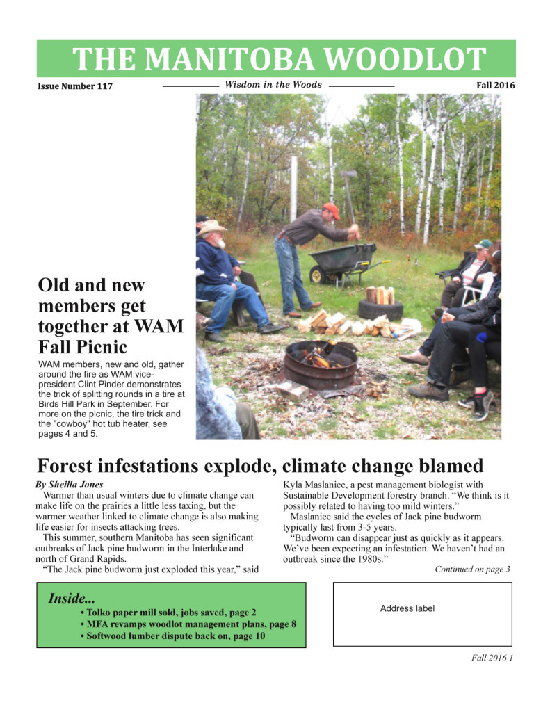 WAM newsletter 117 FP copy