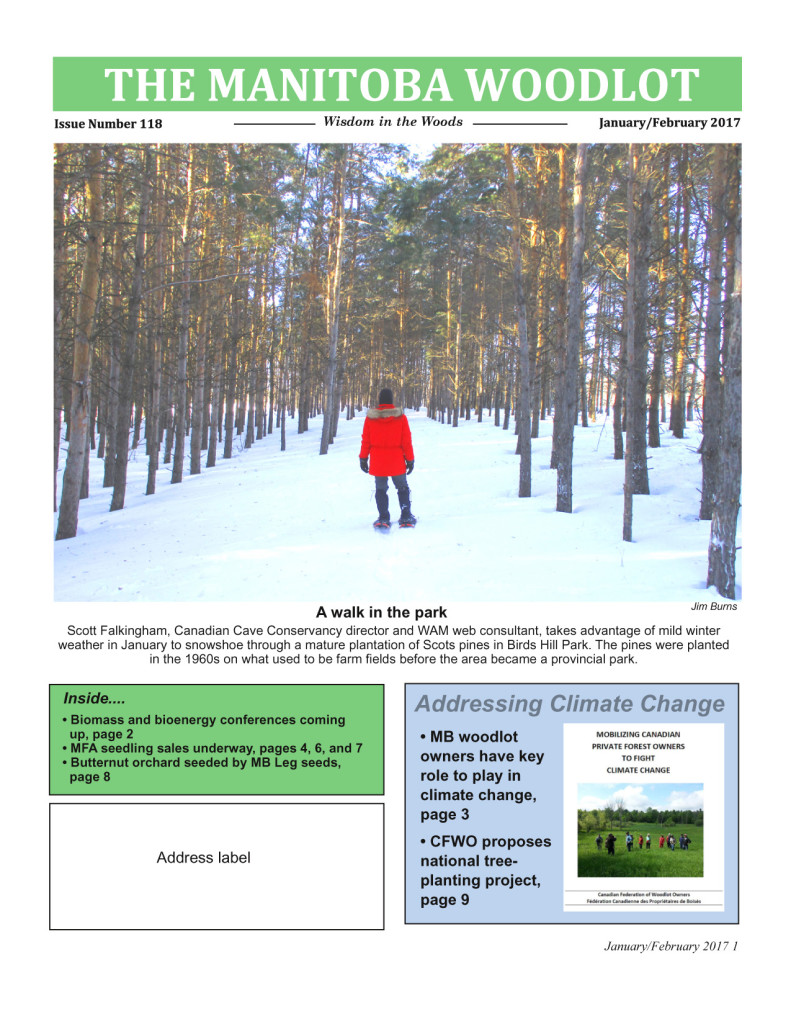 WAM Newsletter 118 FP copy